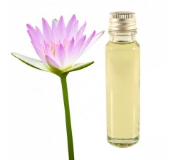 lotus essential oil 25ml