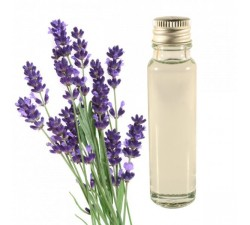 Lavender 20ml - Essential Oil