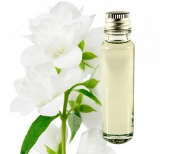 Jasmine 20ml - Essential Oil