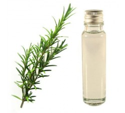 Rosemary 25ml - Essential Oil