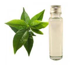 Green Tea 25ml - Essential Oil