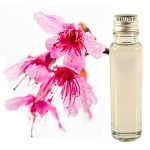 Sakura 25ml - Essential Oil