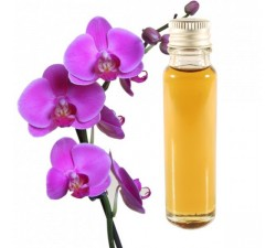 Orchid 25ml - Essential Oil