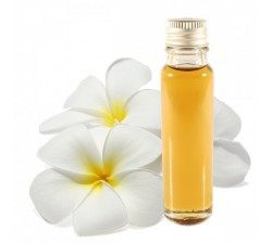 frangipani essential oil 25ml
