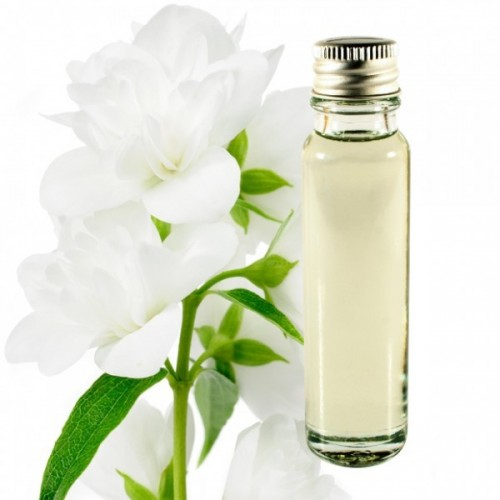 jasmine essential oil 25ml