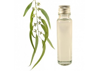 Eucalyptus essential oil 20ml
