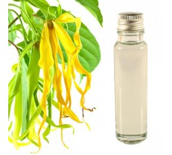 Ylang Ylang essential oil 20ml