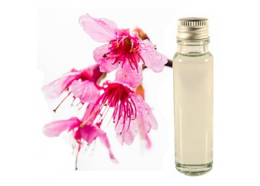 Sakura essential oil 20ml